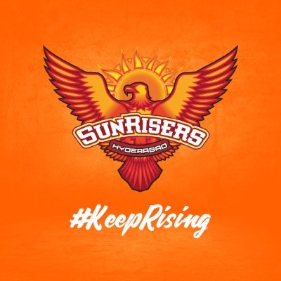 List of Players retained by ipl teams : sunrisers hyderabad