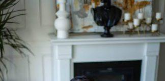 Kevin Kreider Net Worth: Netflix Star Kevin's Bodybuilding Life & More