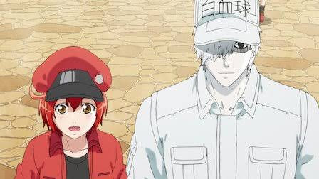 Cells at Work Season 2 Episode 2 Release Date, Story & More Updates