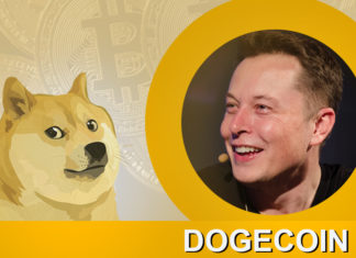 Elon Musk All In In Dogecoin Revolution, Shows Support By Tweets