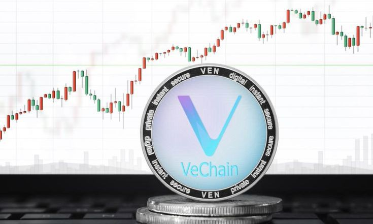 Why is VeChain Dropping now? What is the Future of VET