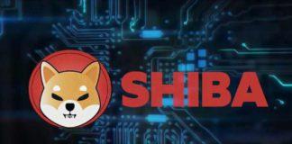 Shiba Inu Will Reach $1 After Crash? Shiba Inu Coin Price Prediction 2021