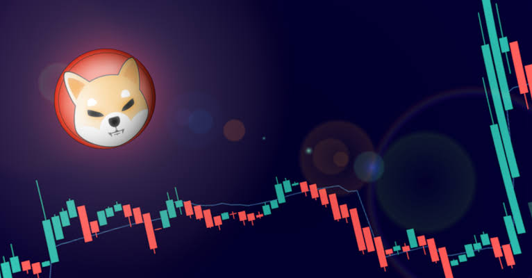 Should You Buy Shiba Inu Coin 2021, Is it safe to invest Shiba Inu Coin?