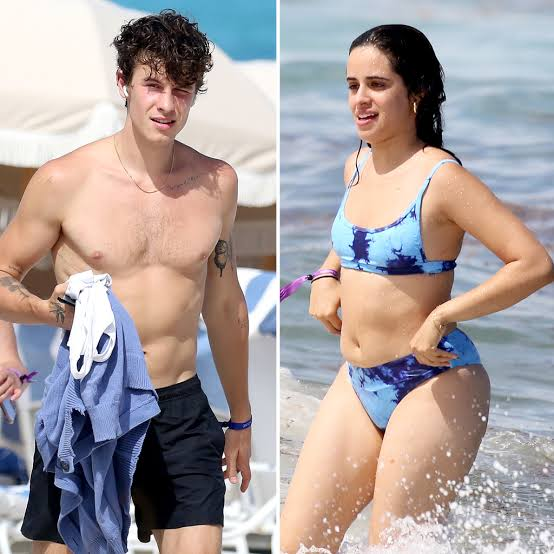 Shawn Mendes Girlfriend's Camila Cabello shows off curves on Miami beach Date