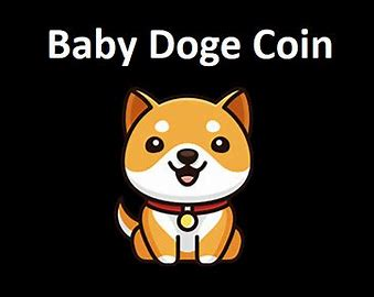 Will Baby DogeCoin Reach $1 After Elon Musk Tweet? Baby Doge Price Prediction