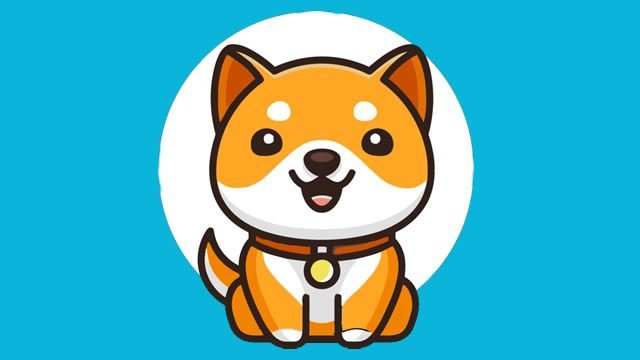 Will Baby Doge Reach $1? Baby DogeCoin Price Prediction