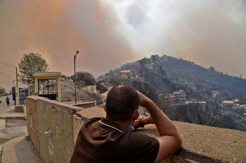 Algeria Forest Fire: At Least 65 Killed In Algerian Wildfires