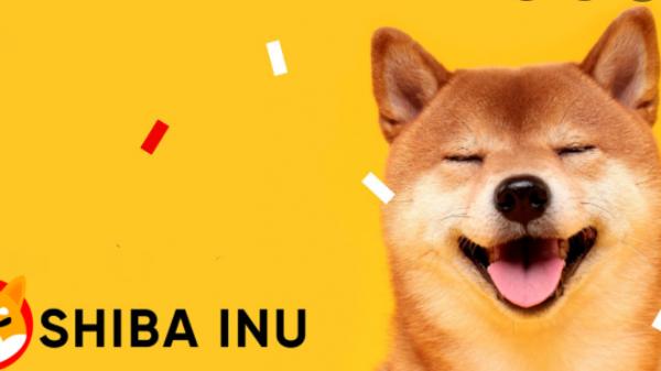 Shiba Inu Coin Hit $1? High Time Now, Shiba Coin To The Moon